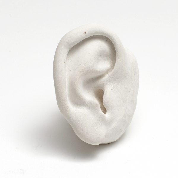 Sculpture Reference Model, Ear